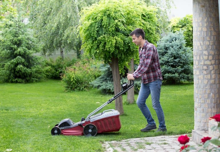 cutting grass in backyard with best cordless electric lawnmower