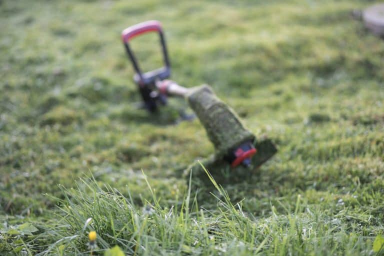 electric string trimmer covered in wet grass