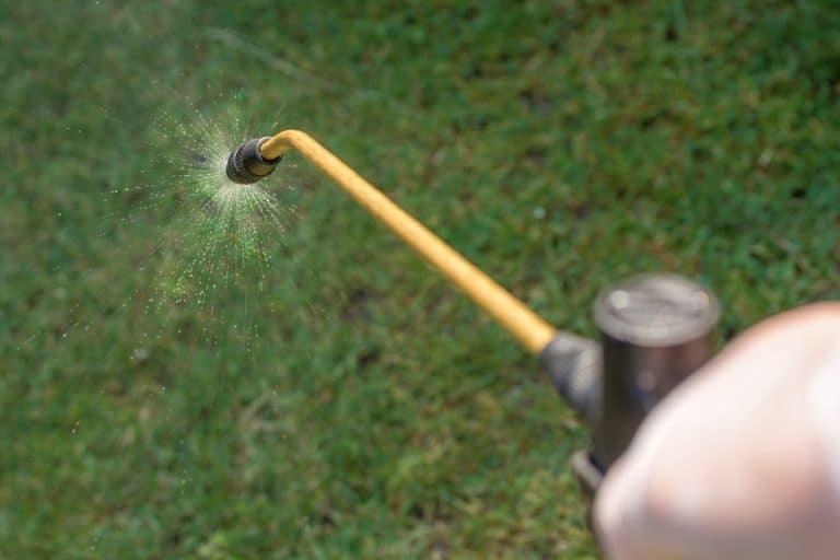 garden sprayer spraying chemicals