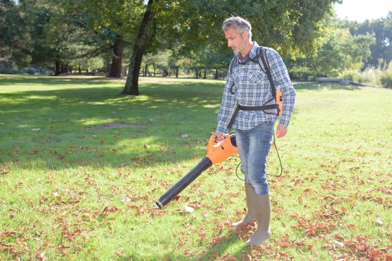 man blowing leaves with a cordless leaf blower